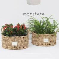 [리빙] 한가득 식물 수반바구니 세트